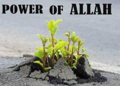 Power of Allah