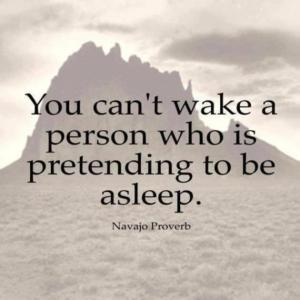 You can't wake a person who is pretending to be asleep